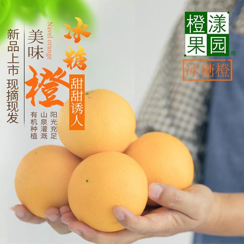 麻阳冰糖橙10斤精品装